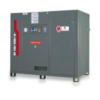 Винтовой компрессор Dalgakiran INVERSYS 55 PLUS -13