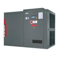 Винтовой компрессор Dalgakiran INVERSYS 110 PLUS -13